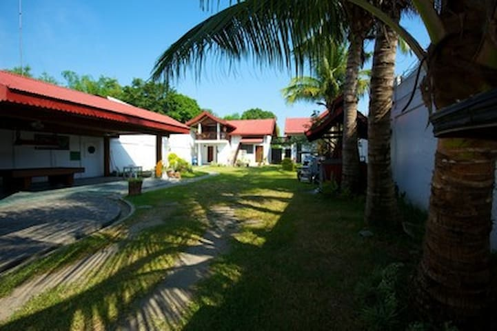 Land in front of our guest houses