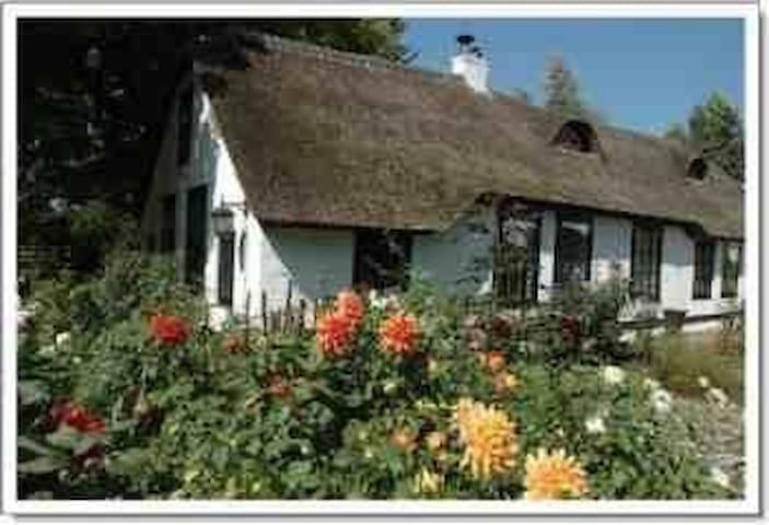 Chestnut Farm House, luxe villa - Aarlanderveen - วิลล่า