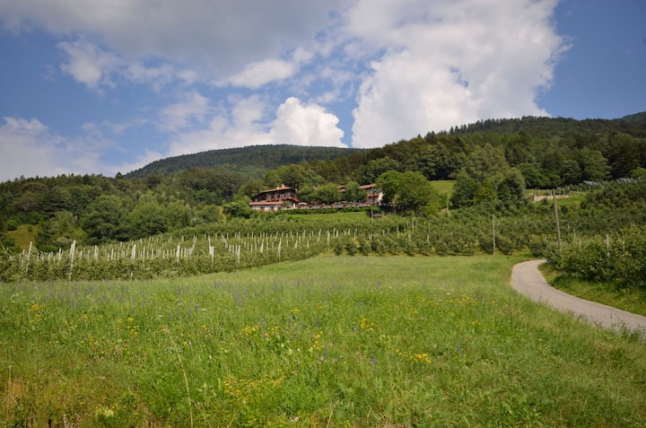 Relax Apartment  Maso Marocc  with valley view