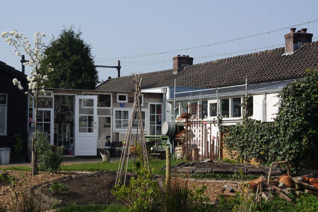 Zonnige, ruime tuin met groenten en kruiden