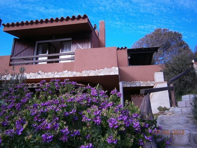 Cottage Michela with Seaview, Garden & Terrace; Parking Available