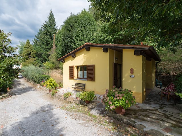 Chalet with pool close to the woods in Tuscany