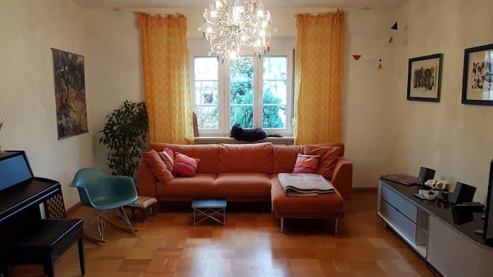 Basel - Charming House