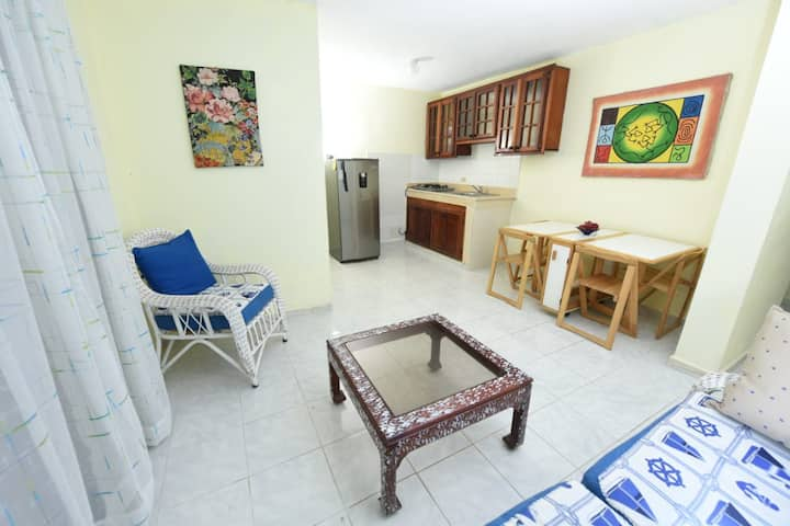 Conveniently Located Apartment in San Pedro