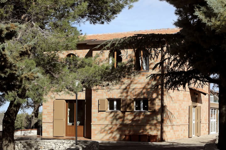 B&B con vista Castel del Monte - Corato - Bed & Breakfast