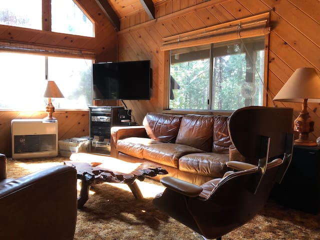 cabin.BLS: pet friendly 2br+loft, wifi, sleeps 8