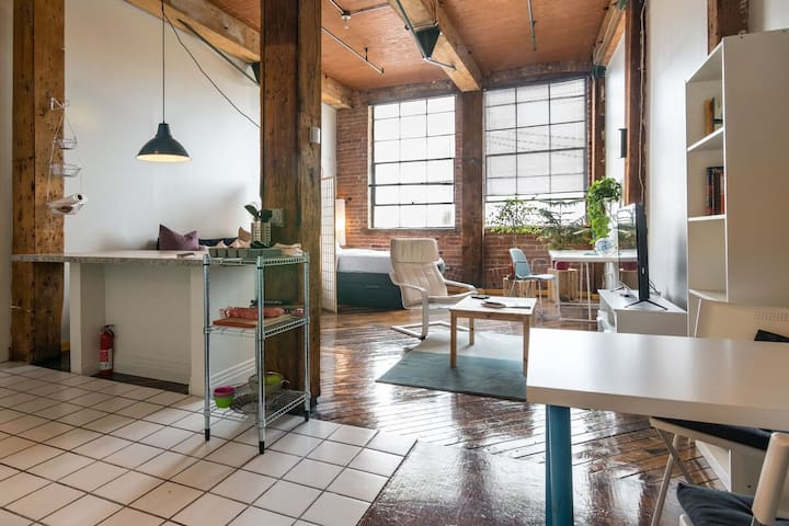 Detroit Loft Overlooking Belle Isle and the River