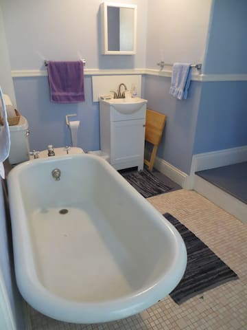 Old fashioned deep tub. No shower.  Bathroom sometimes shared with other guests.