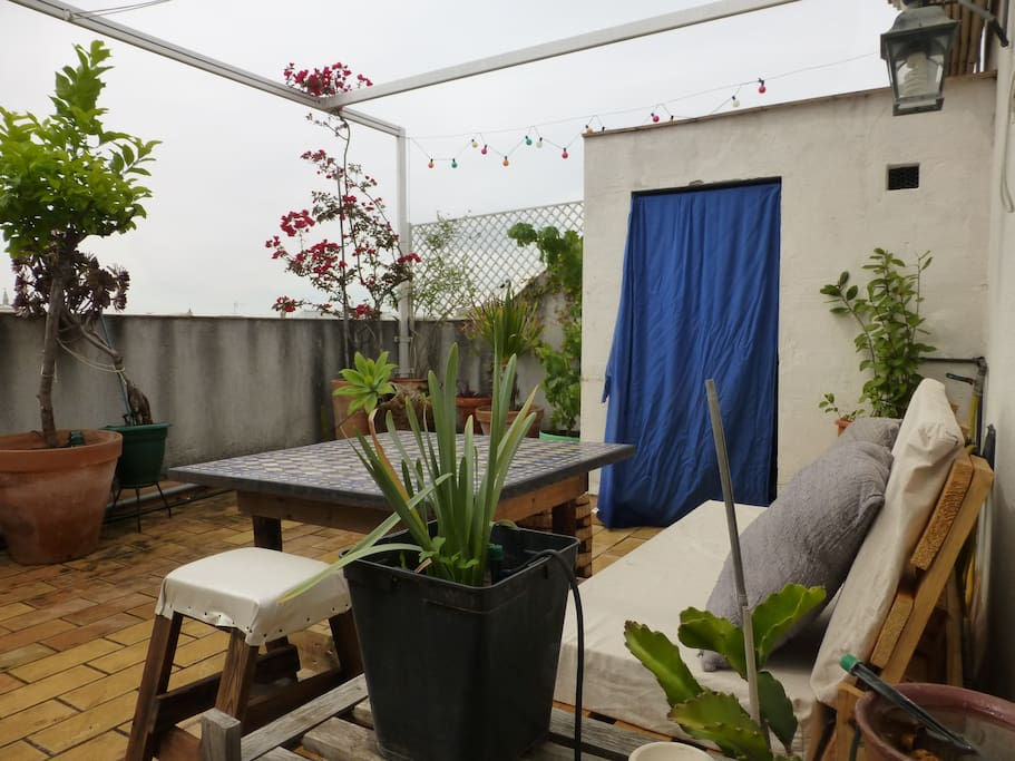 Downtown tea garden tico c ntrico apartments for rent - Garden center sevilla ...
