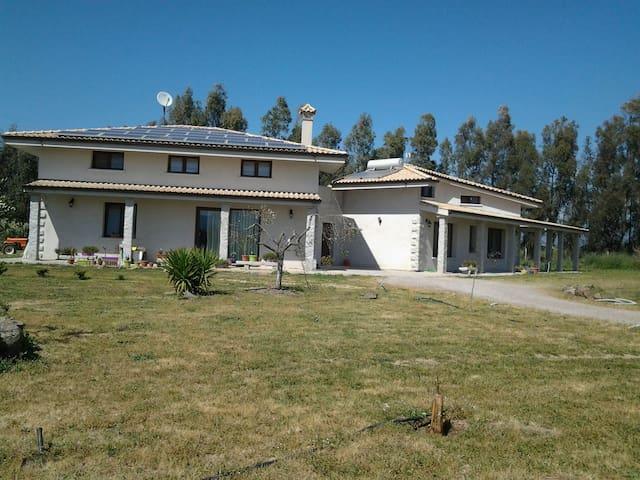 Accogliente villa di 200mq - Terralba - House