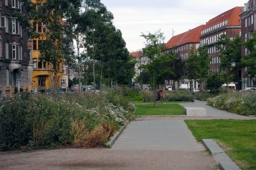 Cosy Sønder Boulevard just outside my door