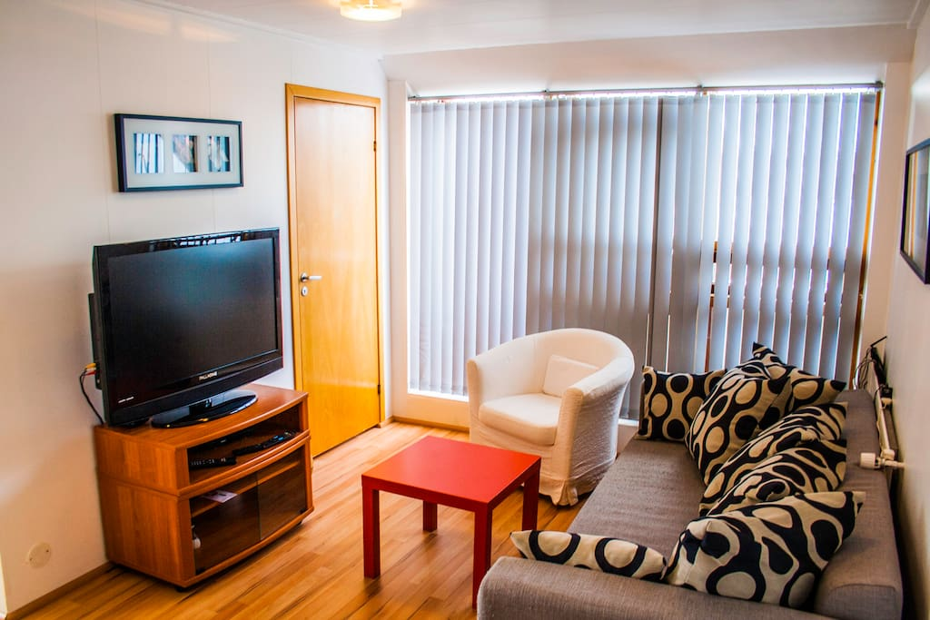 Living room, the sofa bed. Flat screen TV, DVD player and cable channels available