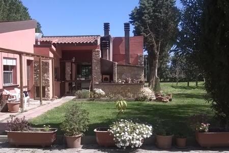 In vacanza sentendosi a casa 4 - Alghero - Bed & Breakfast