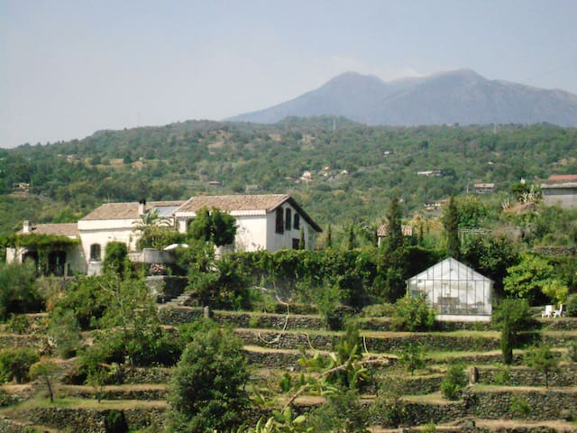 Etnalodge - Piedimonte Etneo - Bed & Breakfast