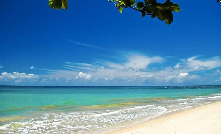 Panoramic Ocean View