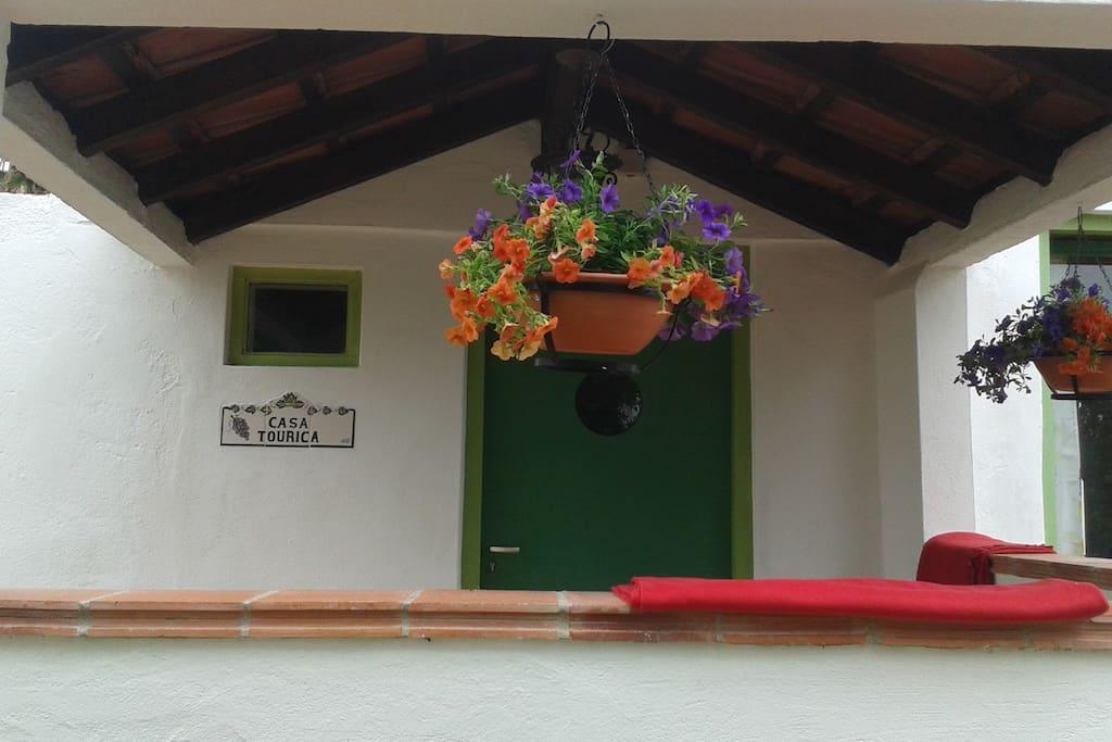 Welcome to Casa Tourica