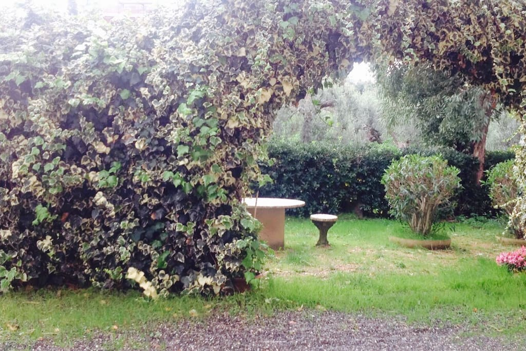 Giardino in comune davanti al ingresso