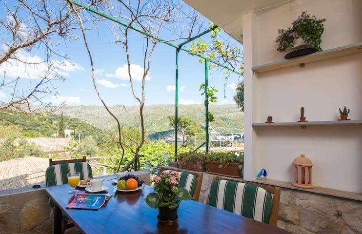 House None in Zaton near Dubrovnik - Dubrovnik - Hus
