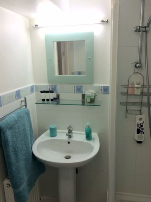 Modern bathroom with shower.