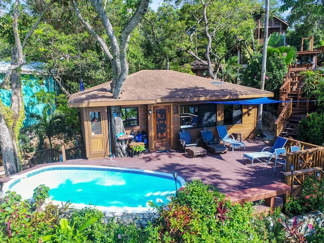 GORGEOUS Mayan 2BED/2BATH Ocean Beach & Pool Front