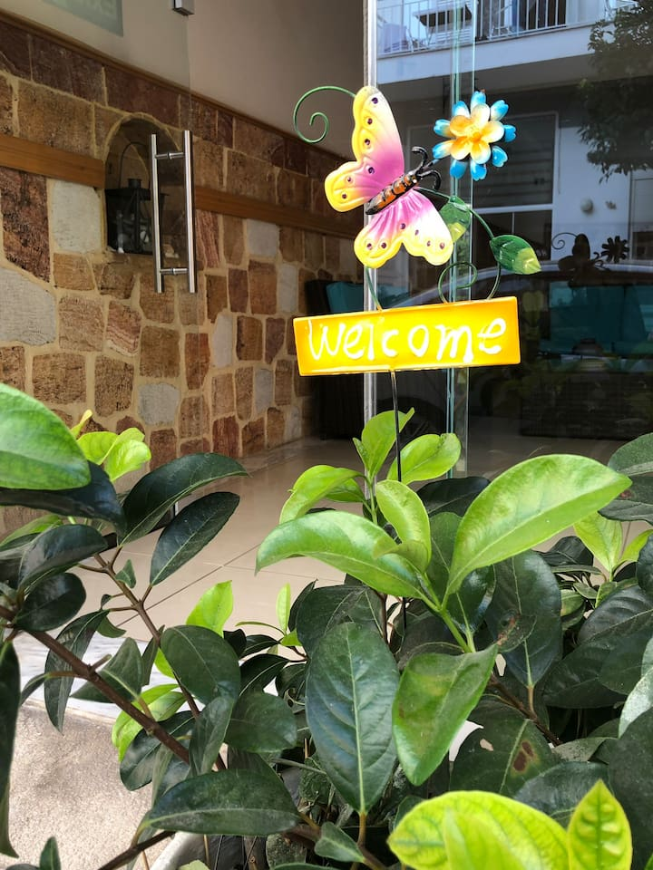 Entrance / Welcome butterfly colors life