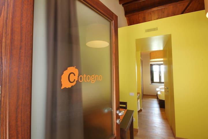 Tetto Garrone: Cotogno (Cydonia oblonga) - Cuneo
