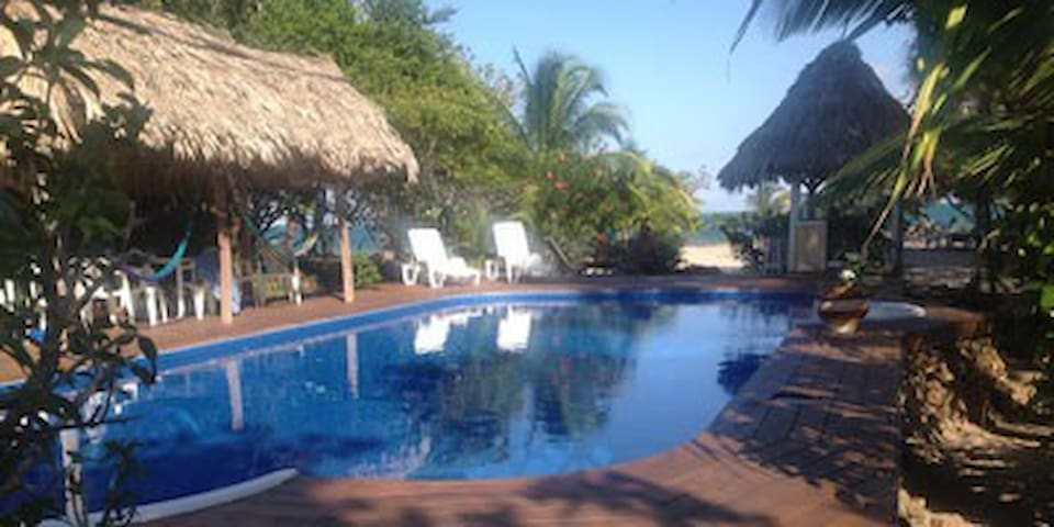 Seaside Eco-Resort - Placencia - Bed & Breakfast