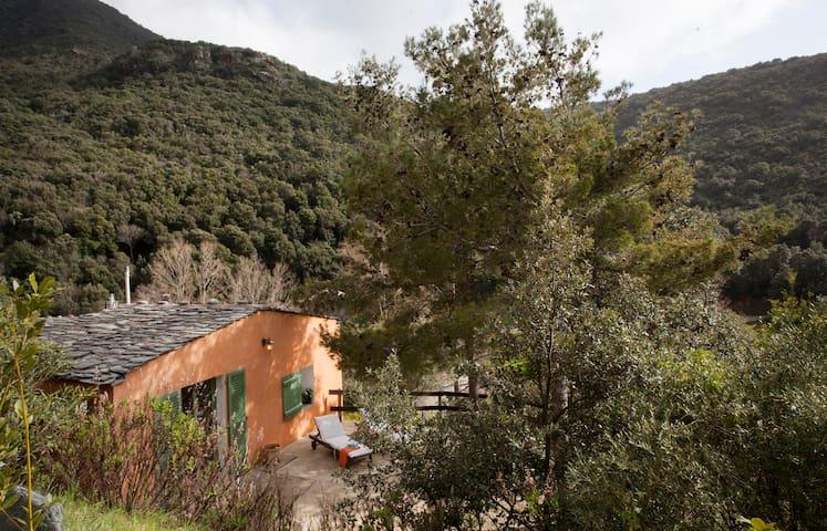 Maisonnette avec patio à 500m plage et rivière