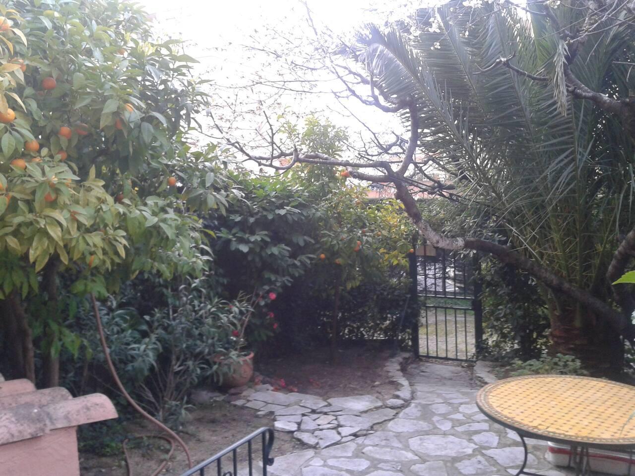 Jardin privatif et arboré. Table et salon de jardin
