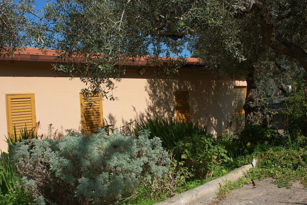 Self catering cottage inside Ginestra