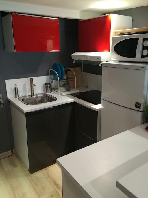 La cuisine avec four, micro-ondes, plaques vitrocéramique, frigidaire, congélateur.