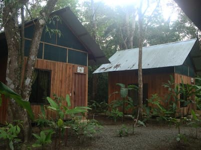 Cacao Monkeys Bungalows