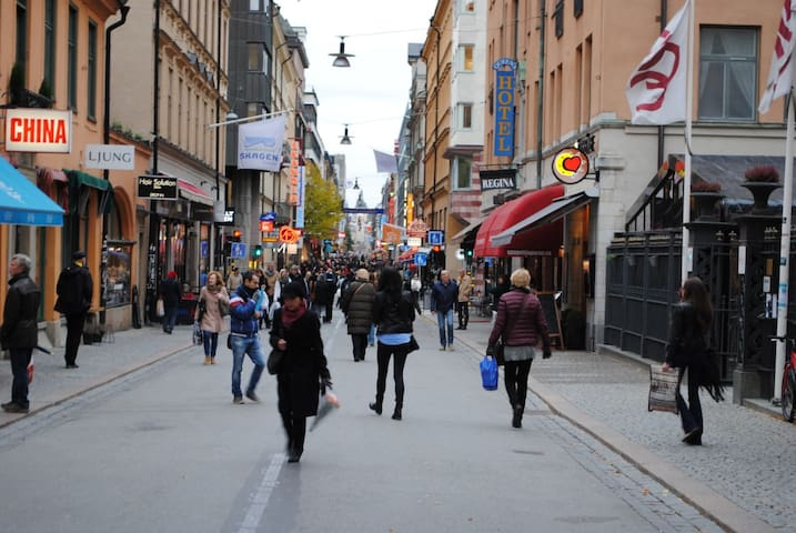 Spacious, lovely and top location in STOCKHOLM C