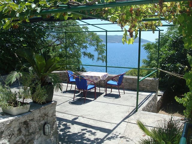 Amazing view in heart of Old Town 1 - Herceg - Novi - House