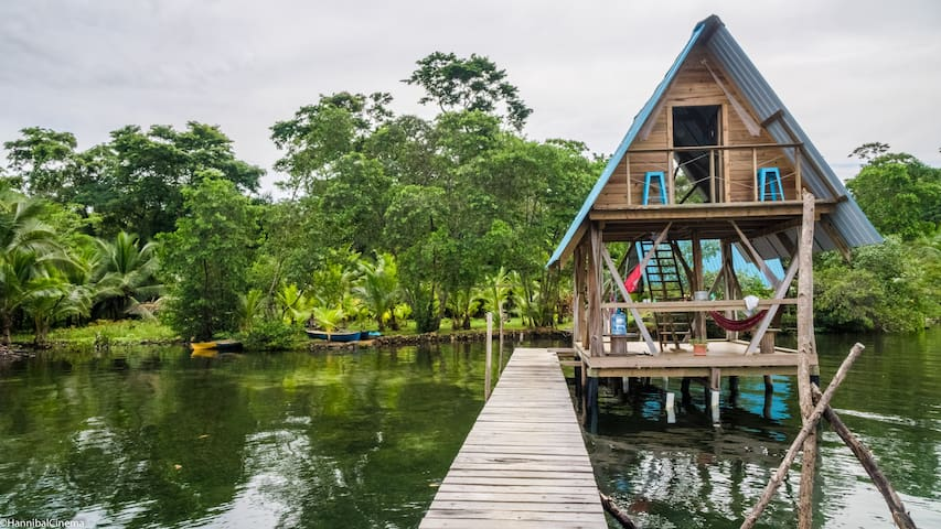 Overwater cabin at Sloth-filled Chocolate farm