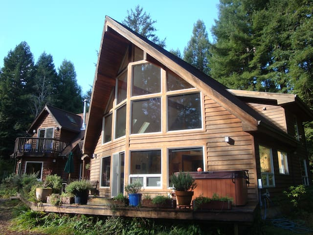 Our custom cedar home sits on a redwood-covered hillside. The studio apartment is downstairs on the far left. (Sorry, the hot tub is just for family.)