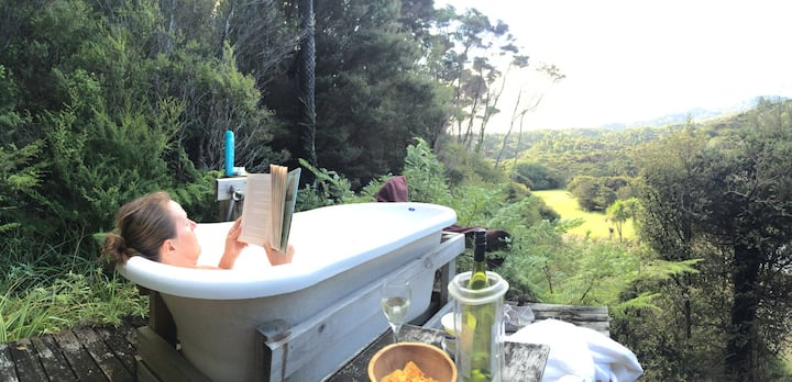 Eco-bach inside a kiwi sanctuary