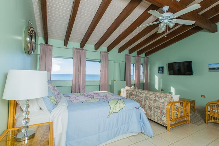 """HBH Bougainvillea Studio > Oceanfront view > Queen Bed > Pull-out sofa (queen-size) > 40"""" LED Wifi/Smart TV"""