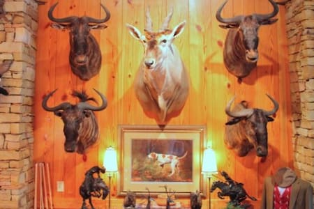 McConnell Hall Trophy Room. - Anderson