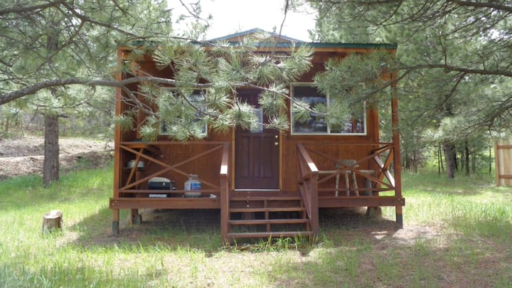Off-Grid 1 Room Cabin Nestled in the Pines, 420 OK