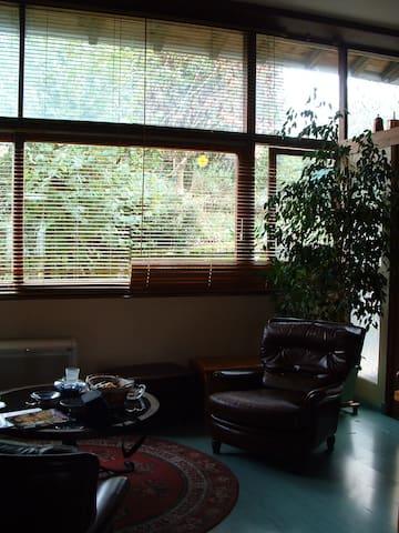 grand appartement dans maison privé - Neuville-sur-Ain - Ev