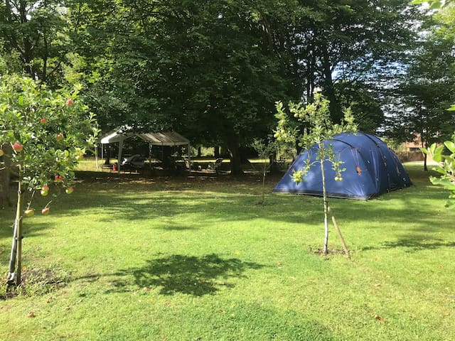 Plot for Campervan or Tent with  Luxury Facilities