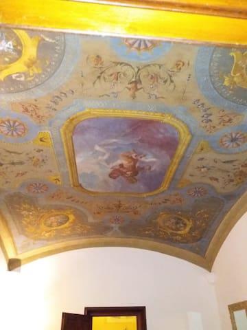 Alla Villa - Bolonia - Wikt i opierunek