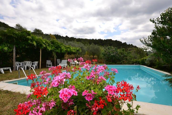 Villa  priv pool florence 6pl hill - Pian di Scò - Dům
