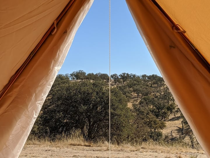 Luxury Glamping Tent w/ Views, Hot Showers, & More