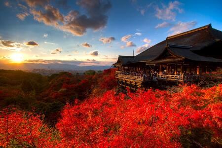"""Sanjo House"" JR Nijo, Kyoto - 京都市中京区 - Haus"