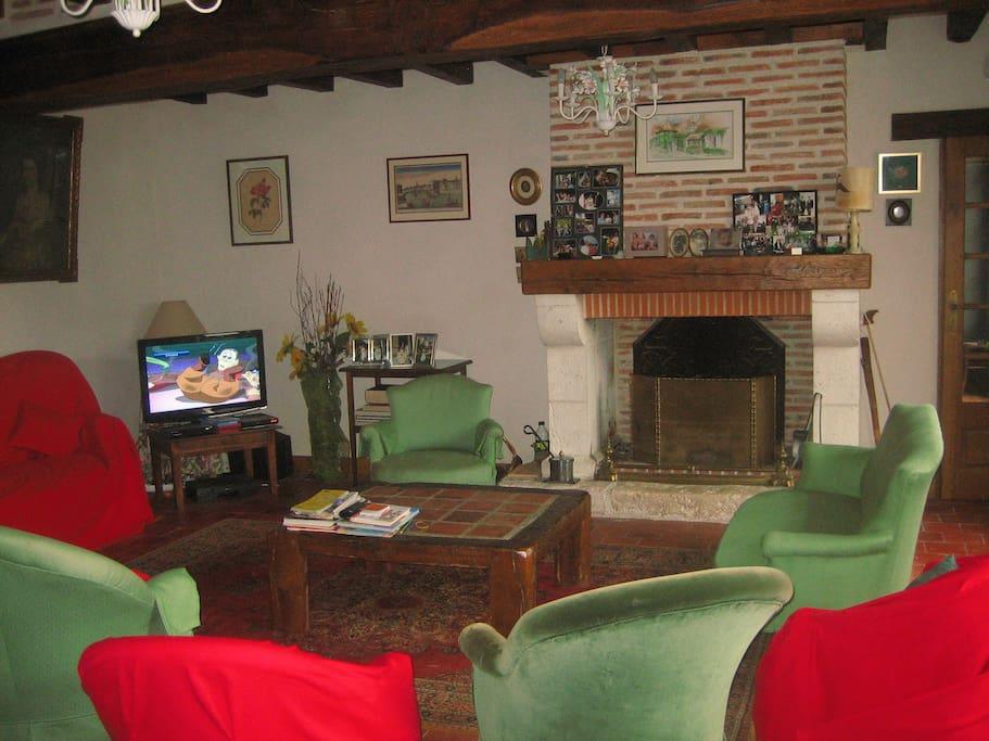 Salon de charme avec cheminée