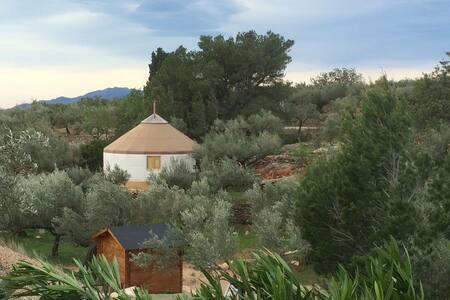 Yurta Mongola Delta Ebro