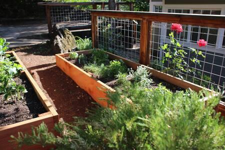 Garden Retreat in Sonoma - Sonoma - Apartment