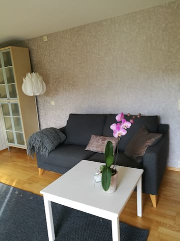 Spacious and sunny 2-room apartment, near Oslo. - Bærum - Apartemen